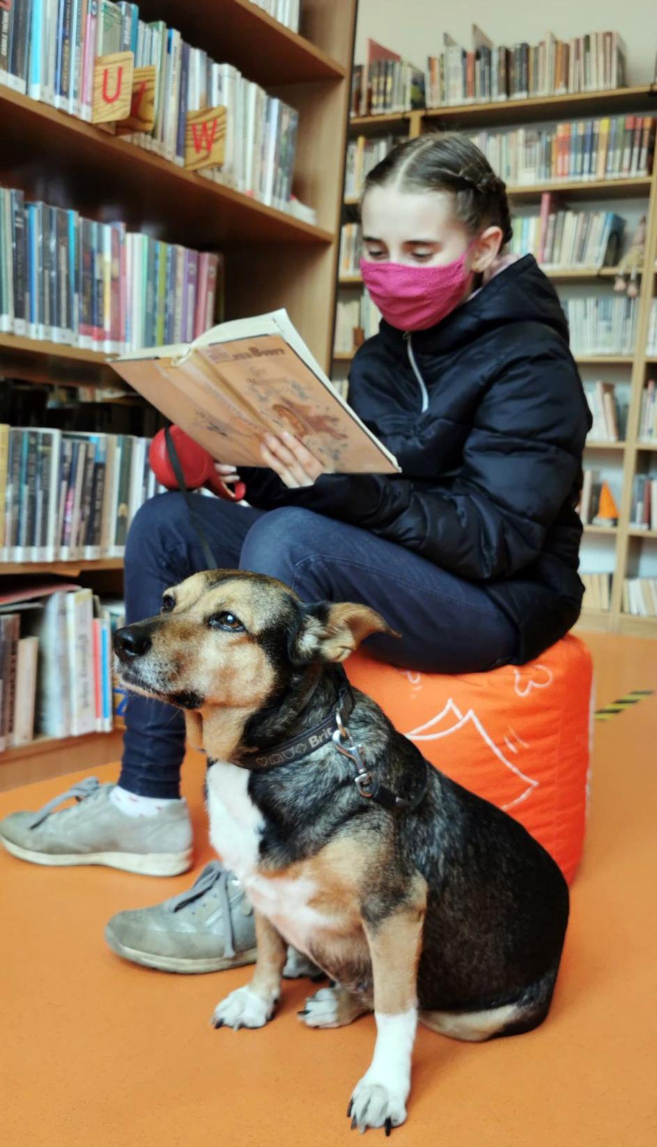 dziewczynka siedzi w bibliotece na pufie w towarzystwie swojego psa